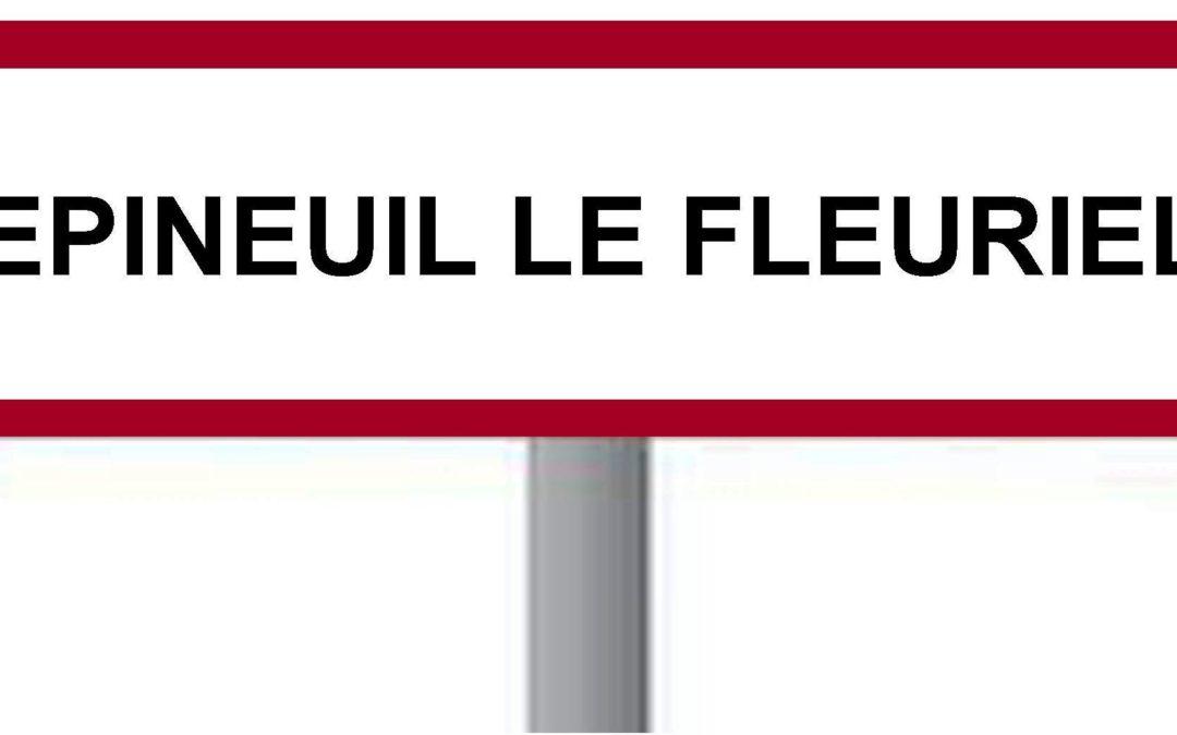 """Quelle est l'origine du nom """"Epineuil le Fleuriel""""?"""