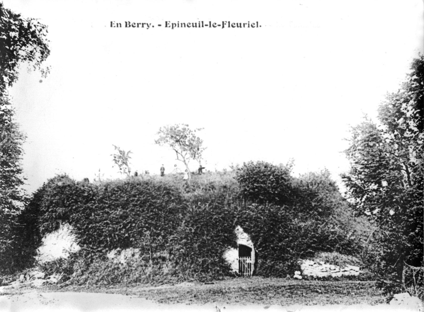 Motte castrale d'Epineuil-le-Fleuriel